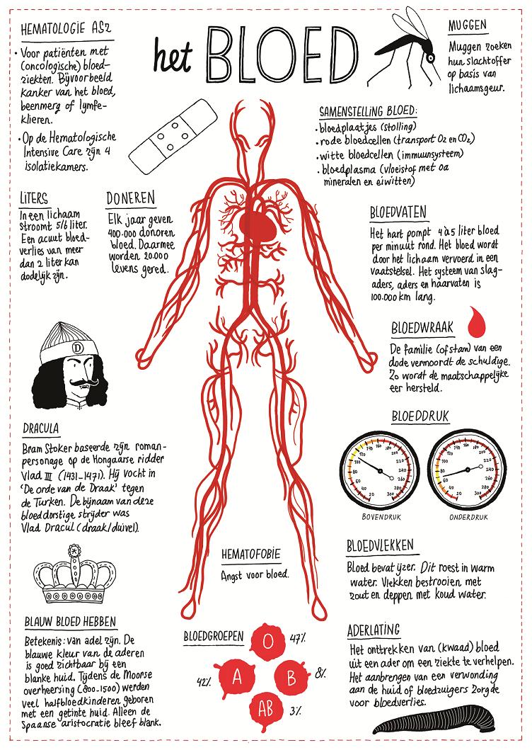 illustratie bloed, laboratoriumtesten, informatiedesk laboratoriumgeneeskunde