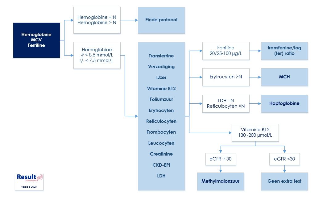 anemiereflexprotocol